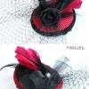 05-veil-pl_