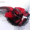 10-veil-pl_